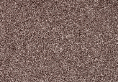 Gentle Bliss carpet colour 220 Acorn