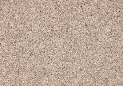 Gentle Bliss carpet colour 260 Camel