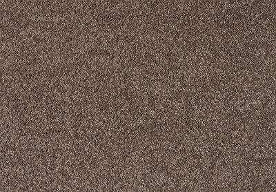 Gentle Bliss carpet colour 470 Angora
