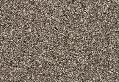Freedom carpet colour 190 Malt Chocolate