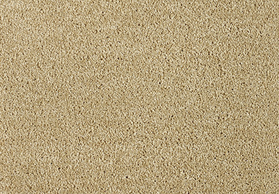 Freedom carpet colour 381 Desert Sand