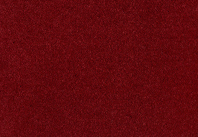 Velvet Dream carpet colour 110 Monarch