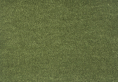 Velvet Dream carpet colour 591 Moss