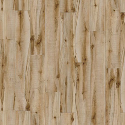 Cotton Wood 20219 Transform LVT