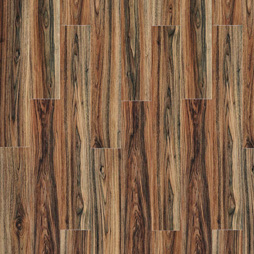 Persian Walnut 20444 Transform LVT