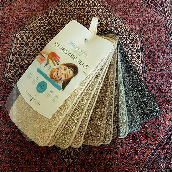 Thomas Witter Renegade Plus carpet samples