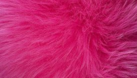 Bowron Sheepskins Longwool Eight Piece Snappin Pink